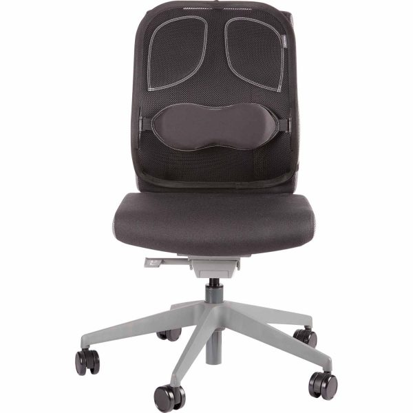 www 8029901 PS Mesh BackSupport Chair F