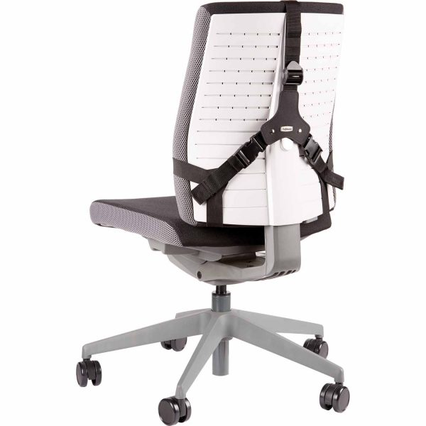 www 8041801 PS Ultimate BackSupport Chair Back